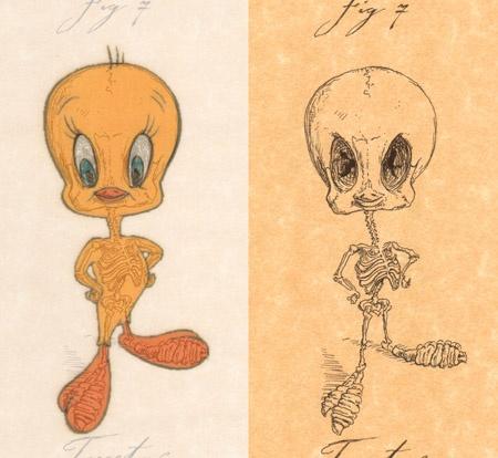 Esqueleto Piolin