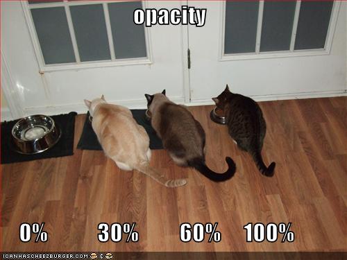 Opacidad con gatos
