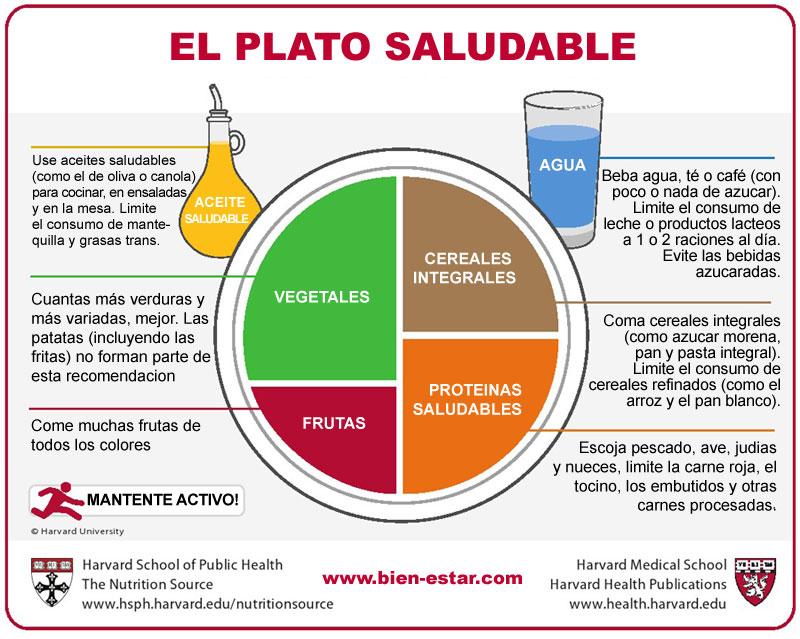 Plato saludable Harvard español