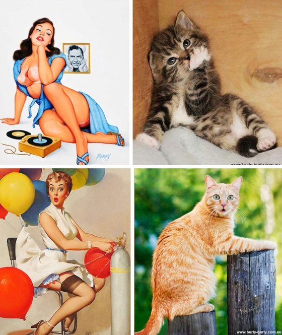 pinup-girls-and-adorable-cats-in-similar-poses